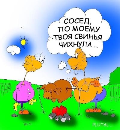 Свинной грипп лечится смехом)))